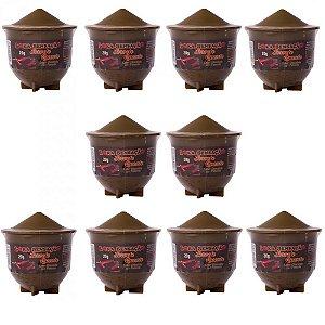 Pack 10 Unidades Sorvete Quente Chocolate com Pimenta Loka Sensação