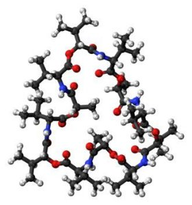 [2001-95-8]Valinomycin10MG