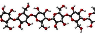 [9004-34-6]Cellulose100GR