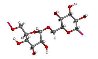 [9004-54-0]Dextran fromLeuconostoc mesenteroides100GR