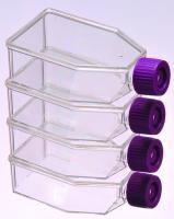 Frascos para cultura de células, linha standard - PS virgem transparente, NAO estéril 250 ML pcte com 5 unidades marca dajota