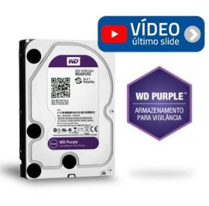 HD Western Digital Purple 1 Tb