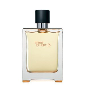 Perfume Hermès Terre d'Hermès Eau de Toilette Masculino