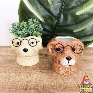 Cachepô cão com óculos
