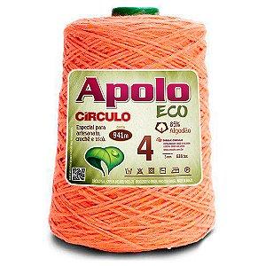 Barbante Apolo Eco 4 Fios 600g Cor 4156
