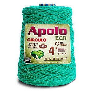 Barbante Apolo Eco 4 Fios 600g Cor 5286
