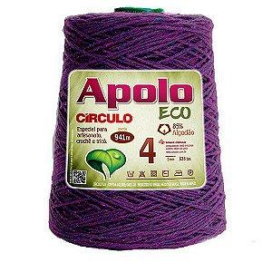 Barbante Apolo Eco 4 Fios 600g Cor 6498