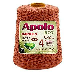 Barbante Apolo Eco 4 Fios 600g Cor 7496