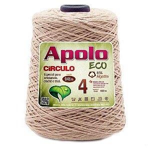 Barbante Apolo Eco 4 Fios 600g Cor 7725