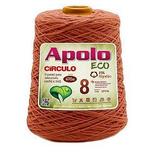 Barbante Apolo Eco 8 Fios 600g Cor 7496