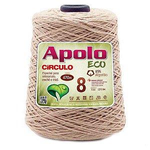 Barbante Apolo Eco 8 Fios 600g Cor 7725