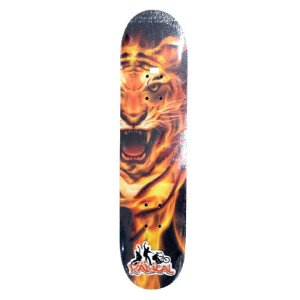 Skate Pequeno para Iniciantes Completo 45cm - SKE17889-LEON