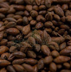 MALTE CHOCOLATE - CRISP