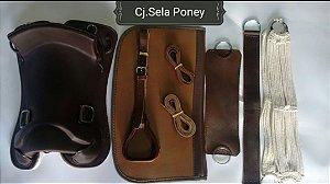 Conjunto Completo sela freio de ouro poney