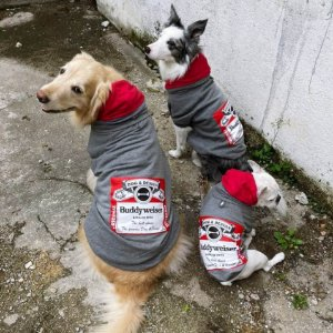 Moletom para Cachorros Cerveja Buddyweiser