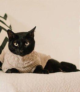 Suéter de Tricot Gola Rolê Ginger para Cachorros e Gatos