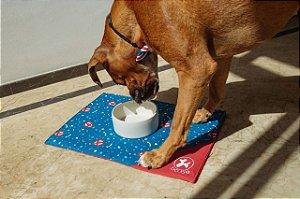 Comedouro para Cachorros | Cerâmica Branca
