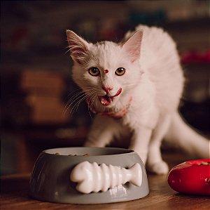 Comedouro para Gatos | Cerâmica Espinha de Peixe Cinza