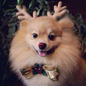 Tiara de Natal com Chifres de Rena Sem Laço para Cachorros e Gatos