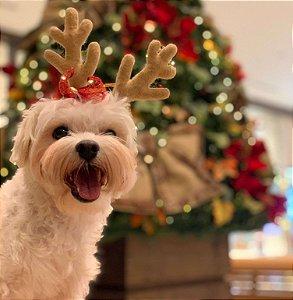 Tiara de Natal com Chifres de Rena Com Laço e Guizo para Cachorros e Gatos