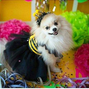Fantasia para Cachorros e Gatos| Abelhinha | Carnaval