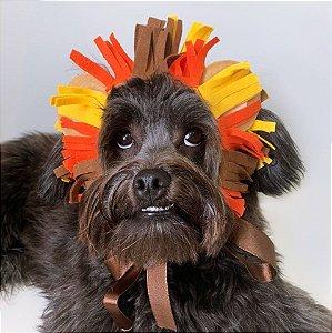 Fantasia para Cachorros e Gatos | Tiara Juba de Leão | Carnaval