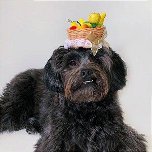 Fantasia para Cachorros e Gatos | Tiara Cesta de Frutas