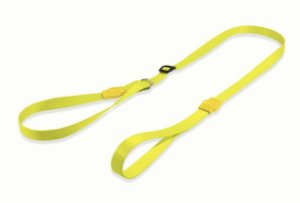 Guia Unificada para Cachorros | Neon Lemon