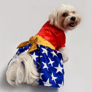 Vestido para Cachorros | Vermelho com Estrelas