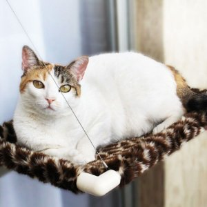 Cama de Janela para Gatos | Catbed Girafa