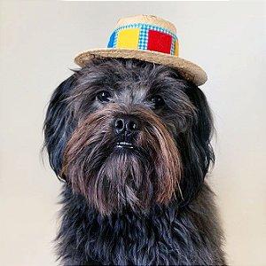 Fantasia para Cachorros e Gatos | Chapéu de Palha | Festa Junina