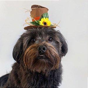 Fantasia para Cachorros e Gatos Chapéu Espantalho