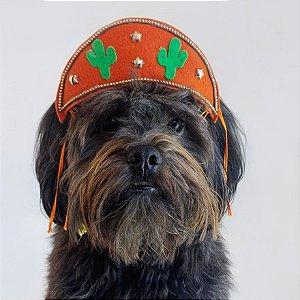 Fantasia para Cachorros e Gatos | Chapéu Nordestino | Festa Junina