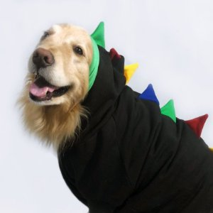 Moletom para Cachorros Dinossauro Preto com Colorido