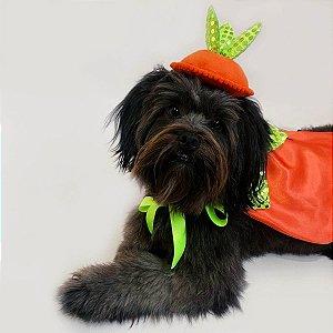 Fantasia para Cachorros e Gatos | Abóbora | Halloween
