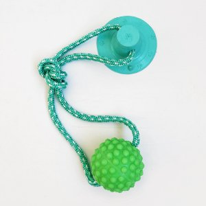 Brinquedo para Cachorros Cabo de Guerra com Ventosa Push Ball Bola Verde