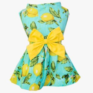 Vestido Pet Limão