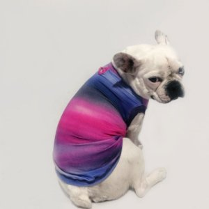 Regata Pet com Proteção UV Tie Dye Pink