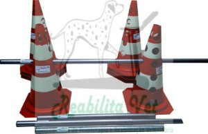 Kit Cones/Bastões Retrátil para Obstáculo