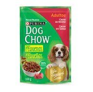 Alimento Cao Dog Chow 100g Adulto Racas Pequenas Carne Molho