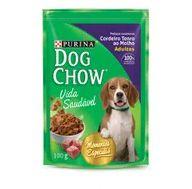 Alimento Cão Dog Chow 100g Sachê Ao Molho Cordeiro