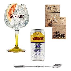 Kit Taça Gin Vidro 600 ml + Gin Tônica 269 ml + colher bailarina + 2 Blends de especiarias
