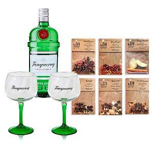 kit Gin Tanqueray  + taças + Especiarias