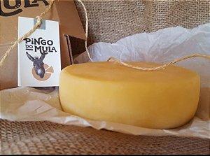 Queijo Canastra Artesanal Fazenda Pingo do Mula