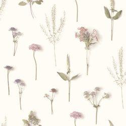 Papel de Parede Natureza Plantas Flores