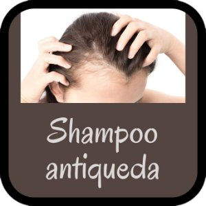 Shampoo Antiqueda (100ml)