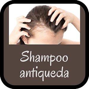 Shampoo Antiqueda (100ml)