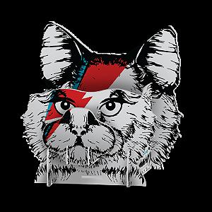 Organizador Gato De Bowie