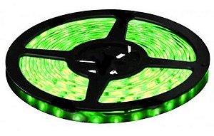 Fita LED - 3528 Verde - Rolo com 5 Metros - 4,8w  - 60 LEDs por Metro - IP65 (com Silicone) - 12V