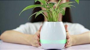 Abajur com planta Bluetooth